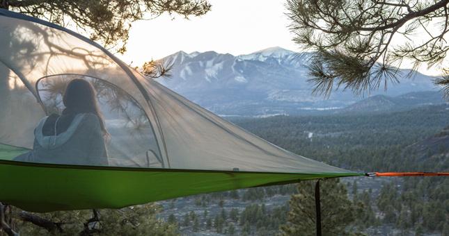 tree camping
